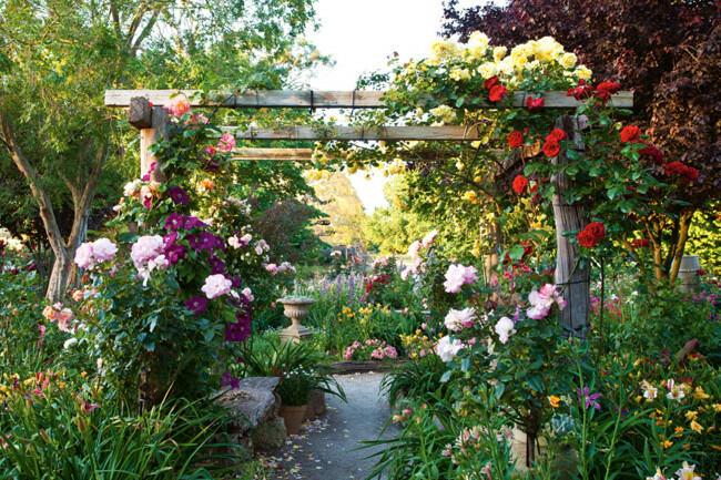 Rose garden the secret garden for Rural garden designs australia