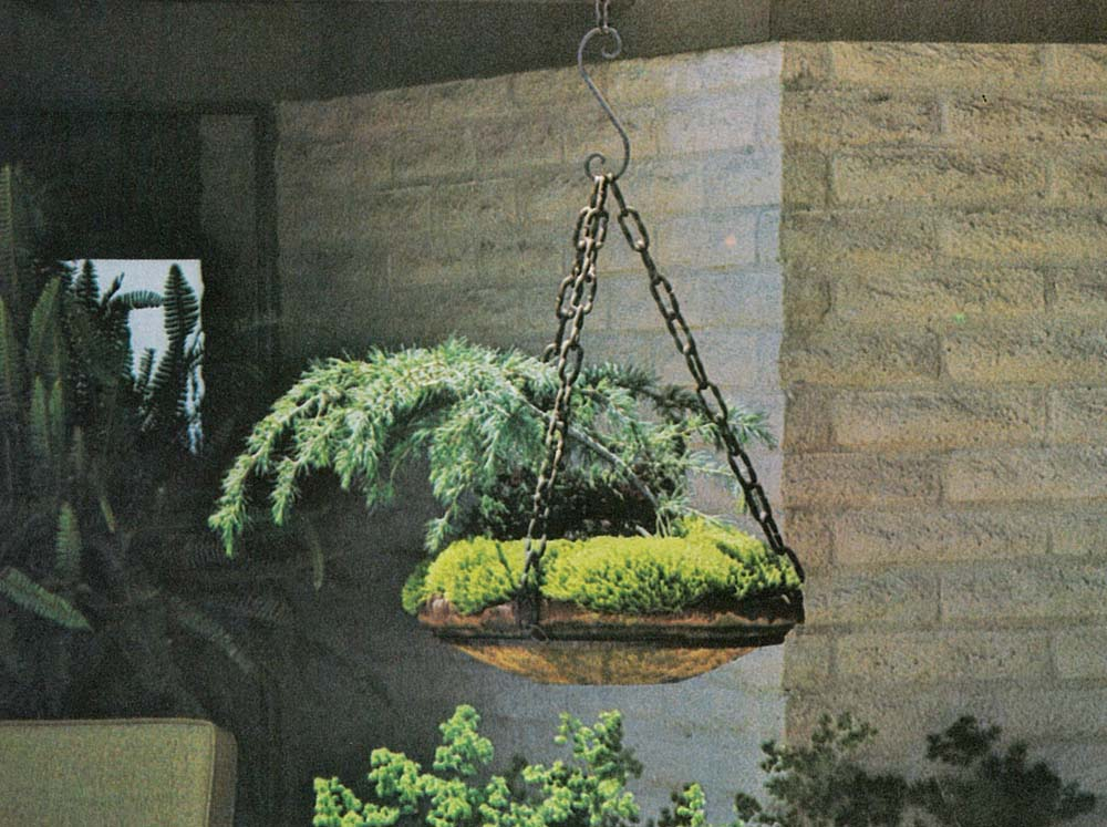 Hanging Garden Ideas potted perfection Hanging Garden