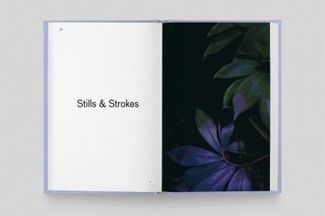 39e65d880efc8bb7-strange_plants_14