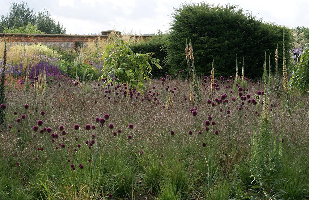 Piet Oudolf The Secret Garden