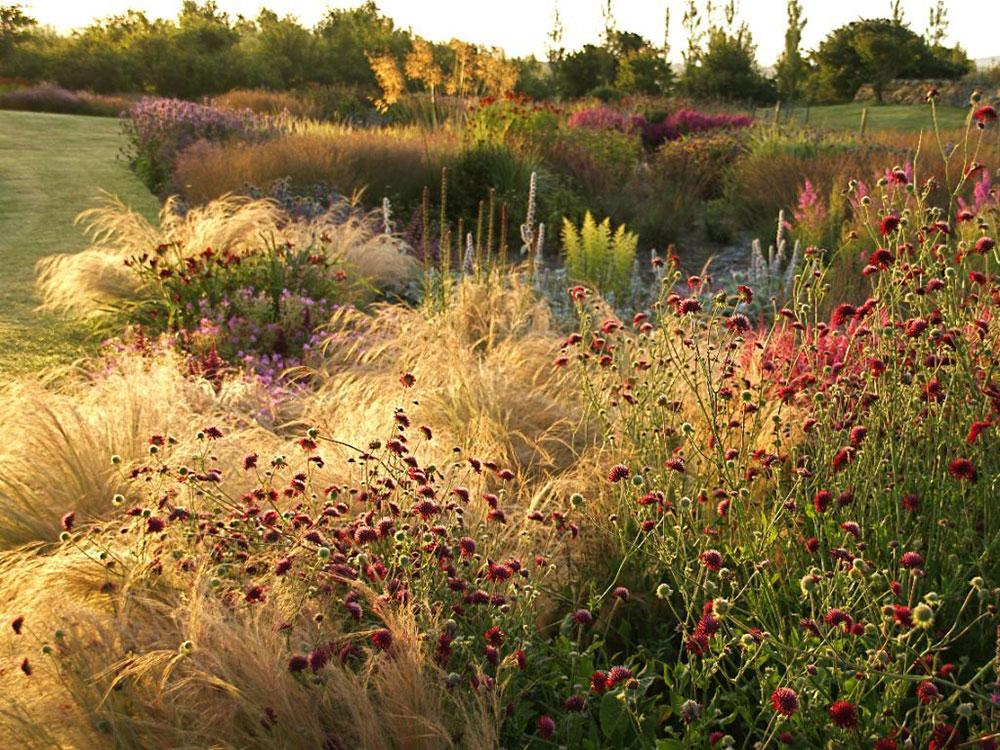 Piet oudolf the secret garden for Piet oudolf serpentine gallery